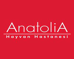 ANATOLİA - REFERANS